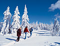 Winterurlaub in Waldmünchen